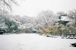 千葉県松戸市平賀にある、本土寺の雪景色