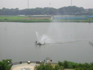 千葉県我孫子市手賀沼の噴水