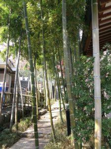 埼玉県川口市安行の密蔵院