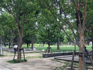 中野区の四季の森公園