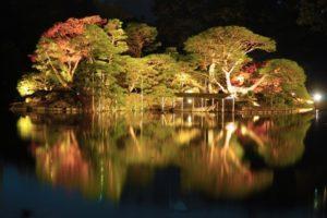 文京区六義園の紅葉