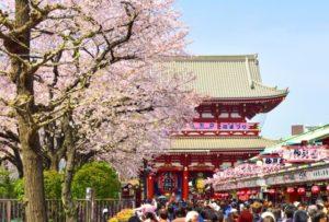 台東区春の浅草寺
