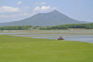 筑西市から見る筑波山