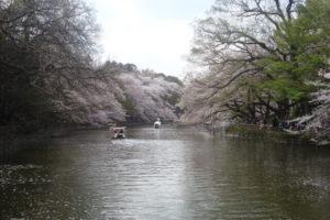 武蔵野市井の頭公園