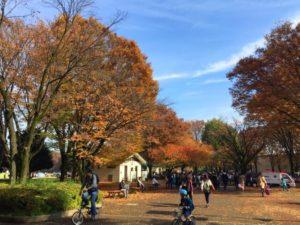 西東京市小金井公園