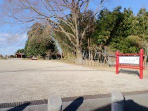 下野市の下野薬師寺跡