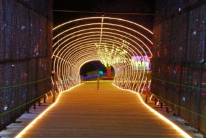 袖ヶ浦市の光のトンネル
