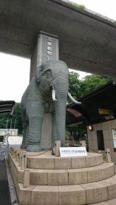 日野市の多摩動物園入口のゾウ