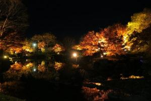 藤岡市の桜山公園
