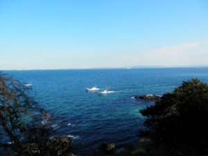 横須賀市の猿島