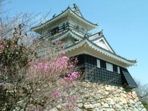 浜松市の浜松城