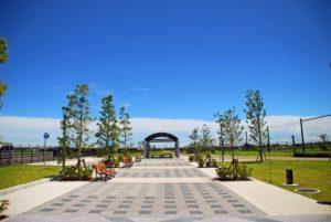 大和市の公園の風景