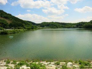 茨城県桜川市のつくし湖