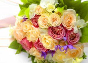 さいたま市中央区の花薔薇