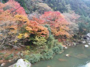 那珂川町の紅葉