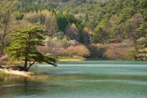 桑折町の半田山自然公園