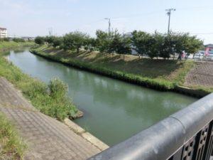 高浜市の川沿いの風景