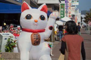 瀬戸市の猫祭り