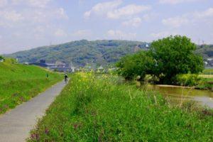柏原市の風景