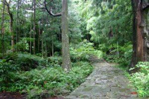 和歌山県の熊野古道