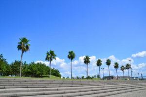 貝塚市の二色浜公園