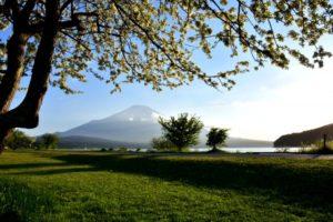 山中湖村 富士山