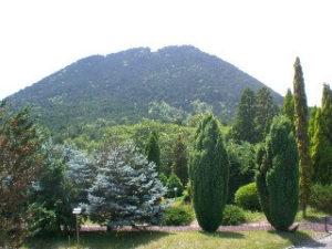 野洲市花緑公園から臨む三上山