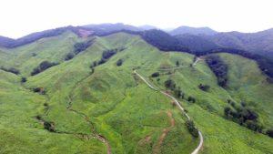 神河町の砥峰高原