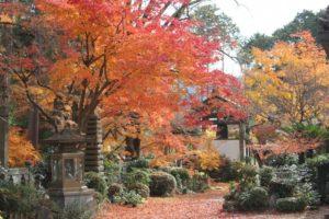 和束町の正法寺