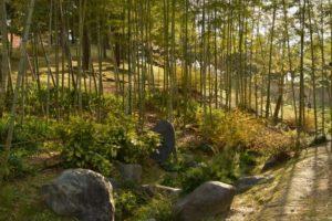 精華町の竹林園