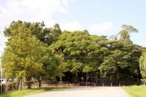 明和町の斎宮跡