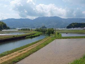 佐川町の虚空蔵山