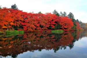 軽井沢町雲場池の紅葉