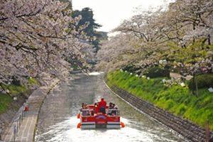 富山市の松川公園