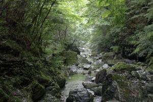 仁淀川町の飛龍の滝