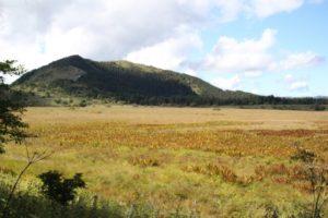 八島ヶ原湿原