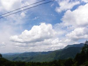 南相木村の夏山