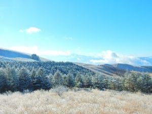 霧ヶ峰高原の風景