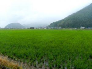 鯖江市の風景