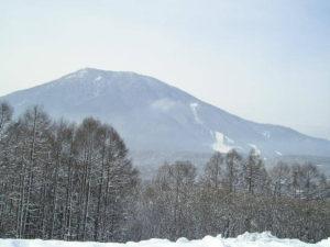 信濃町の雪景色