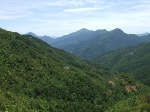 大座礼山の風景