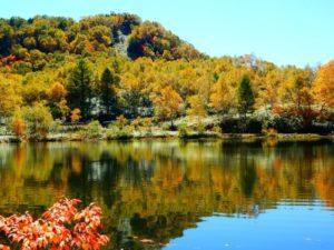 木戸池の紅葉