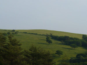 住田町 種山ヶ原の風景