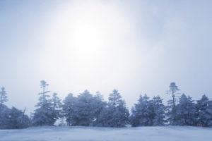 湯沢市の雪景色