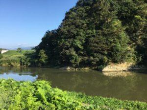 大江町を流れる最上川