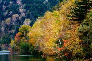 然別湖の紅葉