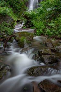 鹿の子沢の渓流