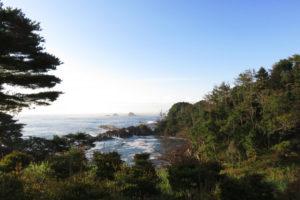 南三陸の海岸